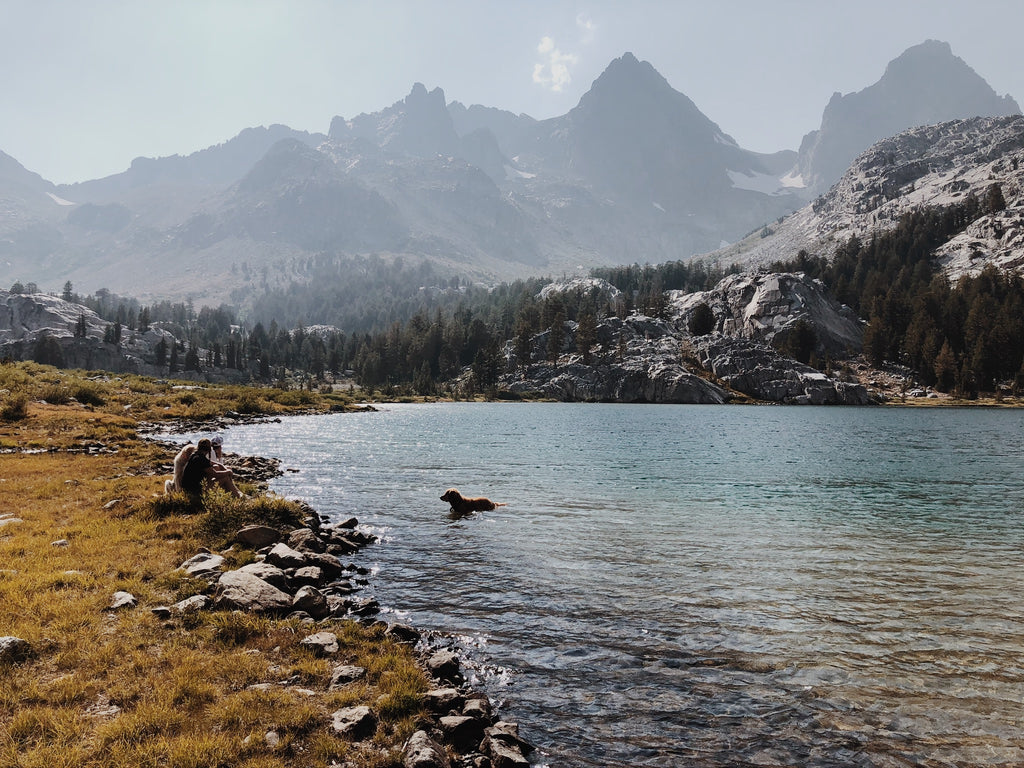 Mammoth Lakes CA: Field Notes