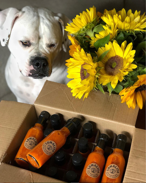 Dog + Favorite Hot Sauce from San Francisco