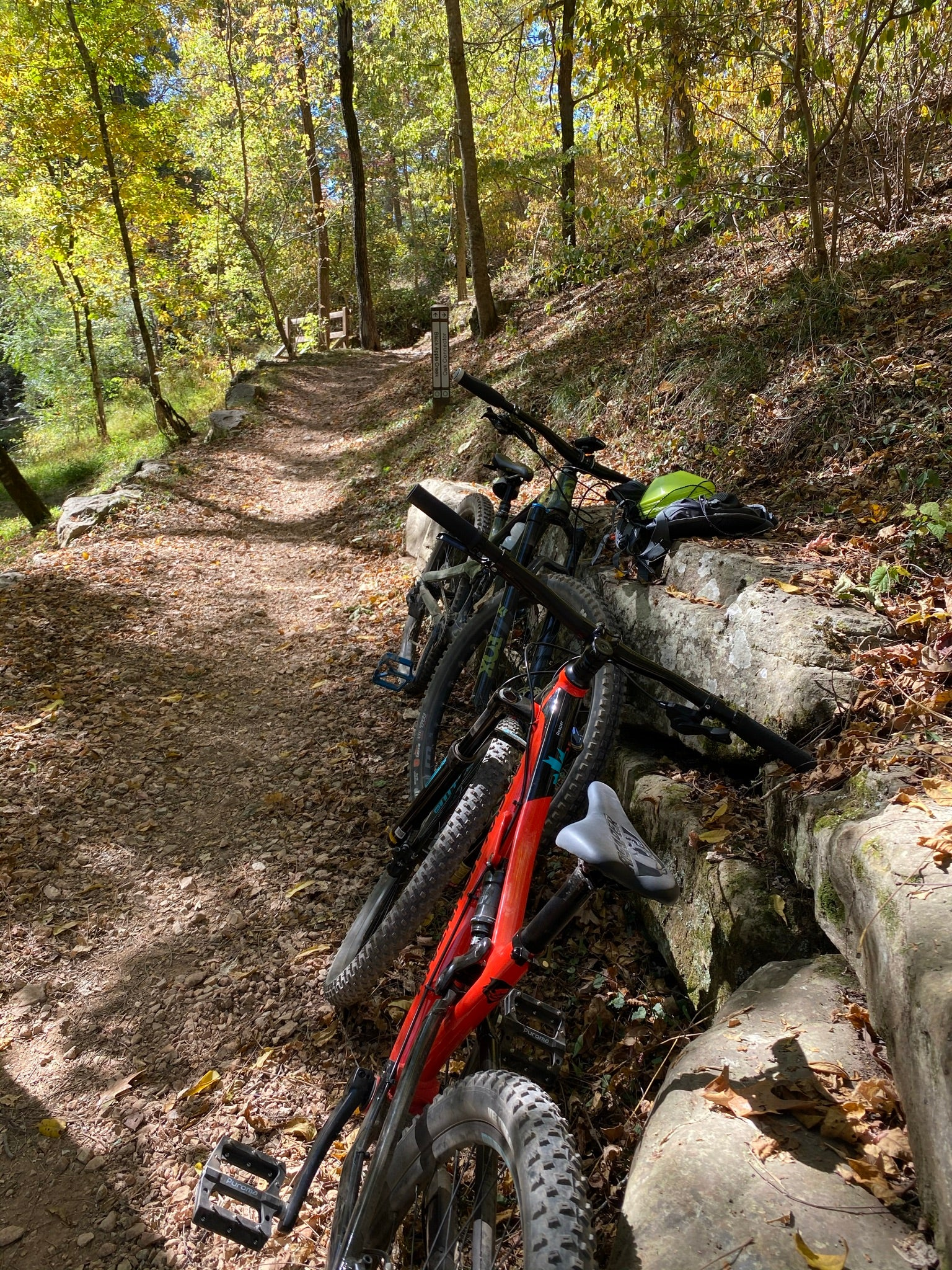 Lunch spot at Park Springs Park Mountain Bike Trails, Bentonville