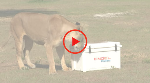Engel Lion Proof Cooler