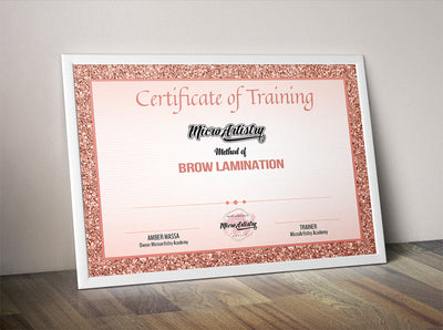 Brow Lamination Live Training In-House
