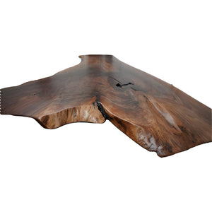 Progenator Black Walnut Slab (1216)