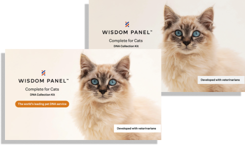 Bundle of twoWisdom Panel™ Complete for Cats kits