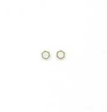 Load image into Gallery viewer, Astrid Stud Earrings
