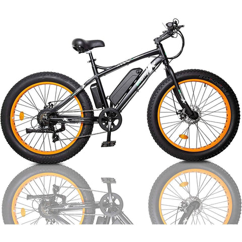 Ecotric Fat Tire Electric Bike 36V/12Ah 500W