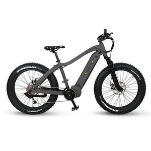 2020 Warrior E-Bike