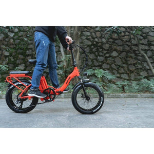 Rattan LF 750W 48V/13Ah Fat Tire Electric Bike