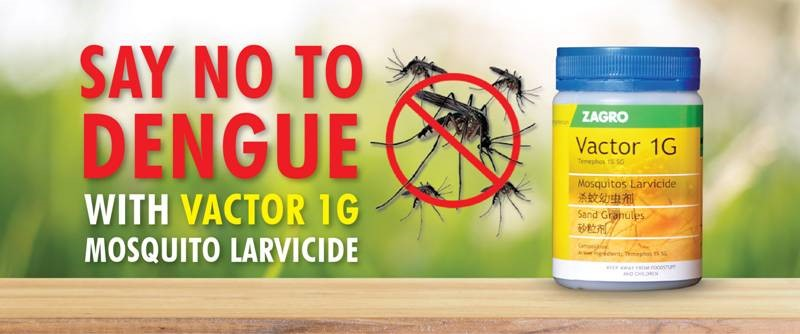 anti-dengue larvicide