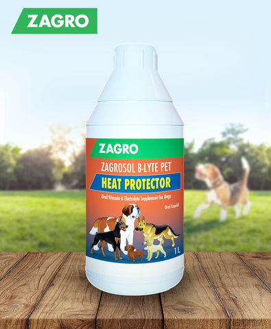 Zagrosol B-lyte Pet (Oral Vitamin & Electrolyte Supplement) 1L
