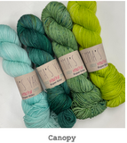Emma's Yarn Kits for Casapinka Botanique Pattern