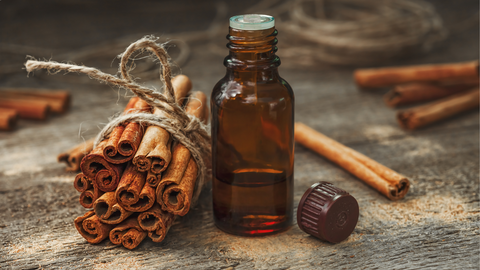 cinnamon essential oil can help keep you safe and healthy