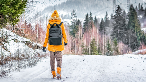 stay safe and promote wellness by walking during the winter months