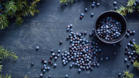 juniper berries have been used for millennia to aid digestion problems