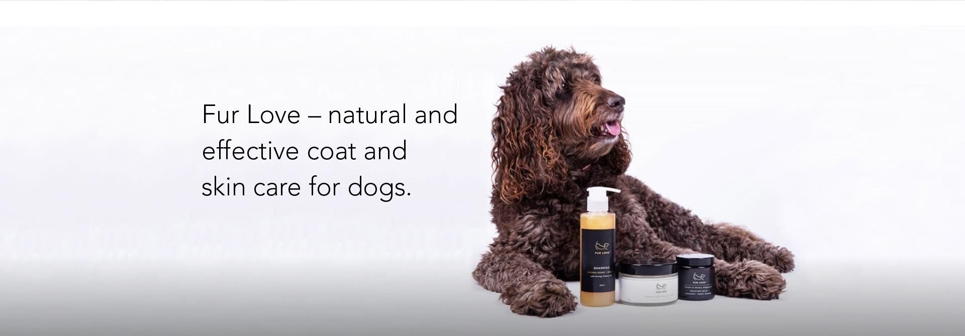 Dog itchy skin solution with professional dog grooming products