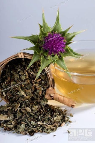 Susu thistle - Should You Take Liver Supplements - ipharmahome Farmasi online