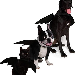 👻Halloween Pet Bat Wings