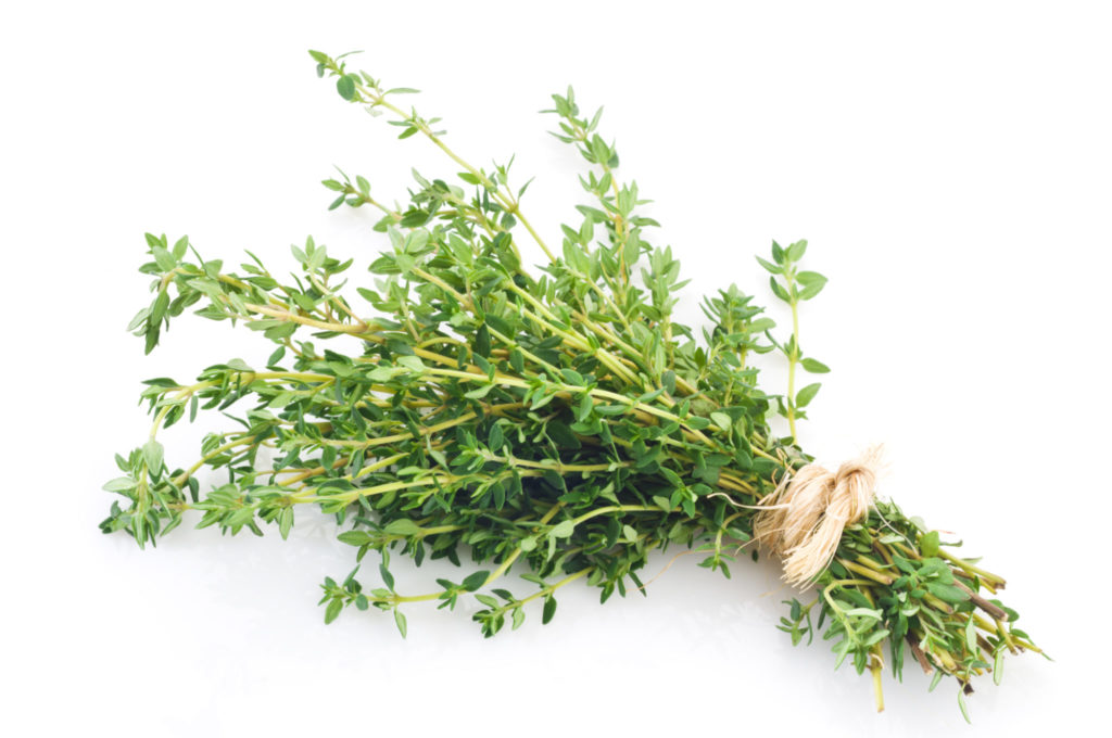 A bunch of lemon thyme to keep the bugs away.