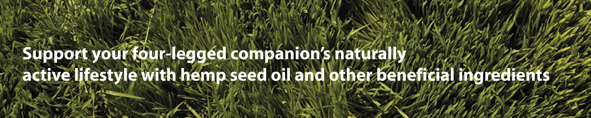Support your four-legged companion's naturally  active lifestyle with hemp seed oil and other beneficial ingredients