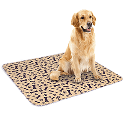 Amazon Product Photography China Pet Pad
