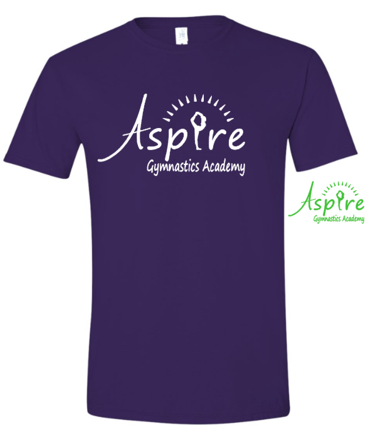 Aspire Logo Purple Boxy T shirt
