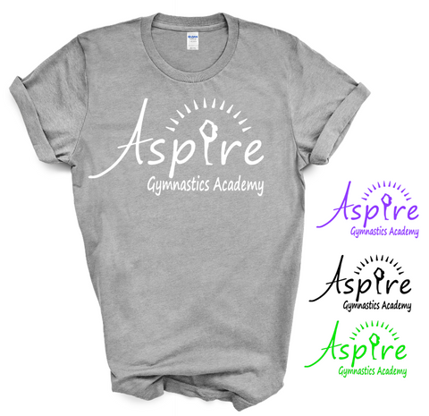 Aspire Logo Gray Boxy T shirt
