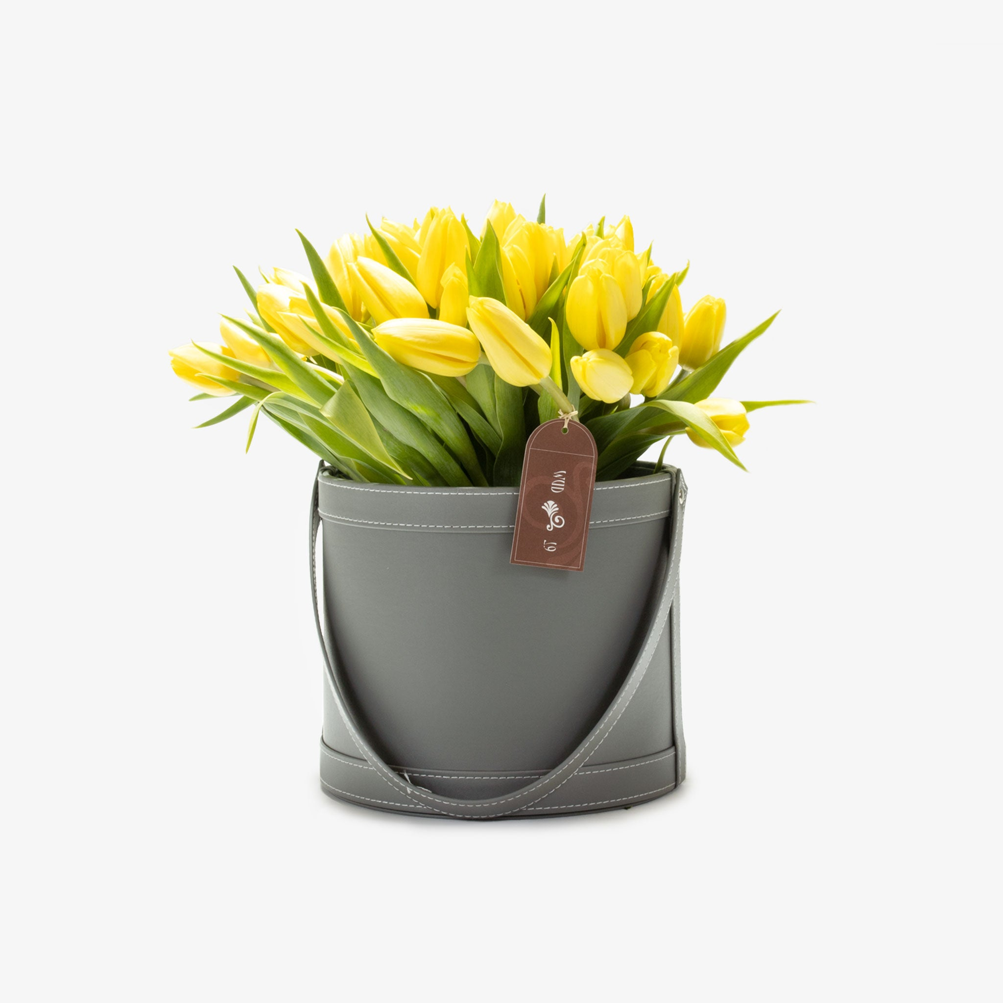 Yellow Tulips - Wudflowers