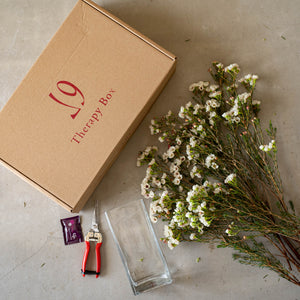 Therapy Box Wax Flowers - Wudflowers