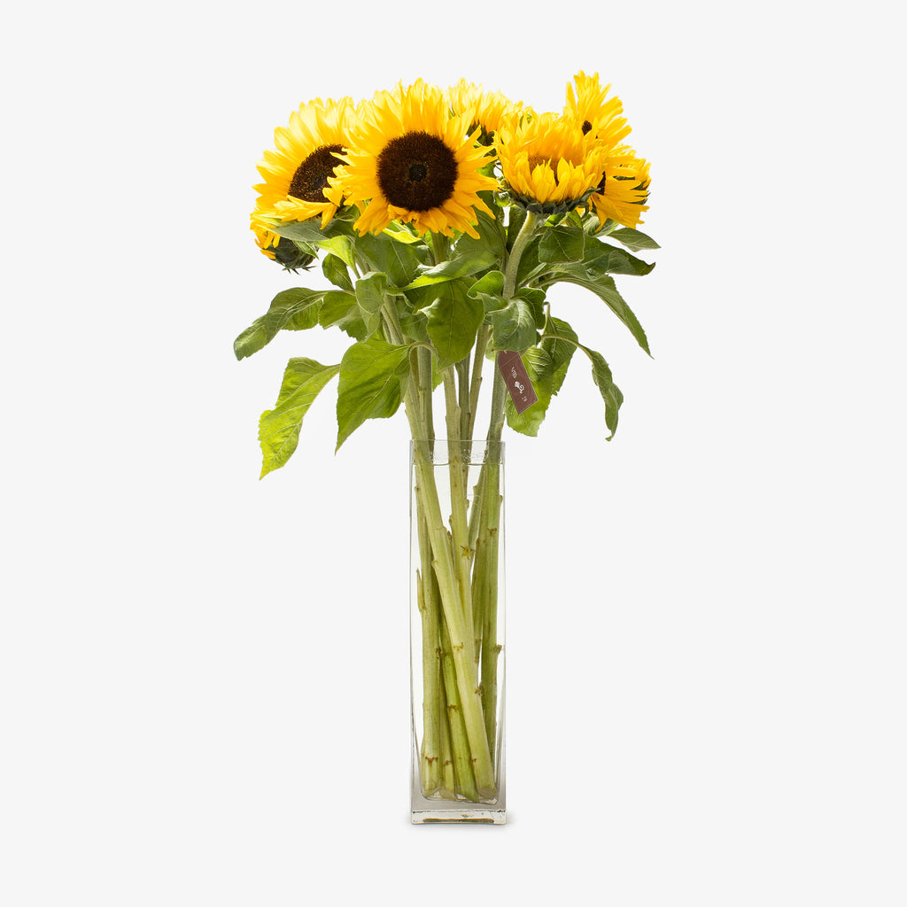 Bunch of Sunflowers - Wudflowers