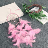 Pink feather wall decor