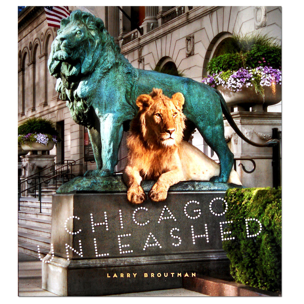 Coffee table books chicago architecture foundation shop chicago unleashed hardcover book geotapseo Choice Image