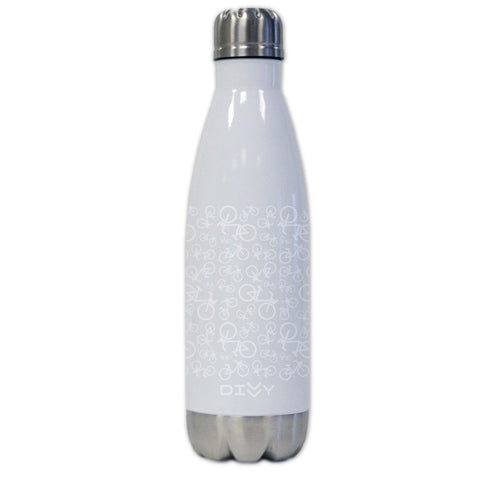 Divvy Stainless Steel Thermal Bottle