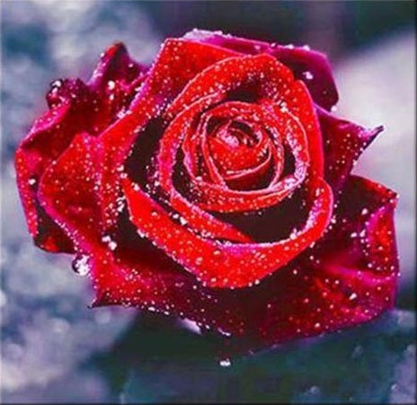 Rose 5D DIY Full Drill Diamond Painting
