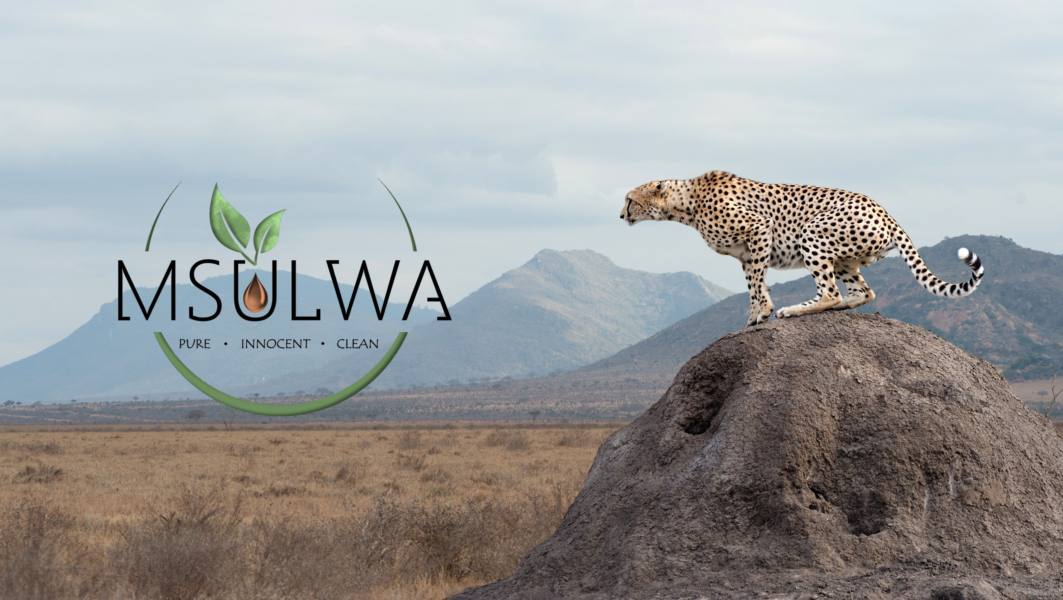 Msulwa eco-friendly products shop online at www.msulwa.co.za and www.msulwa.com
