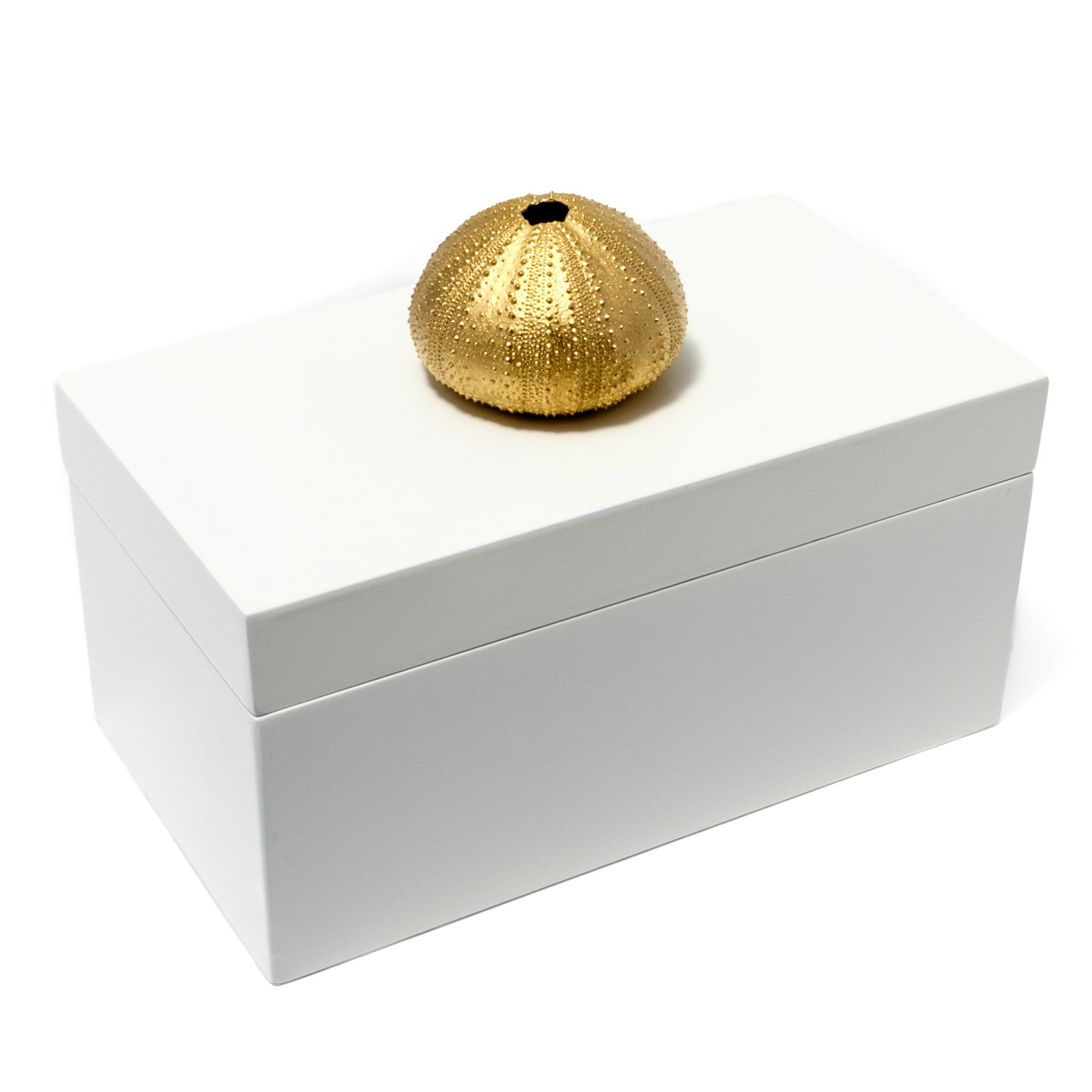 Large White Lacquer Box with Gold Urchin