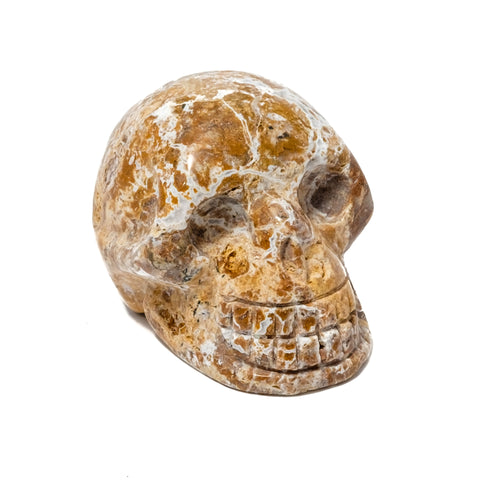 Polished Jasper Skull Figurine