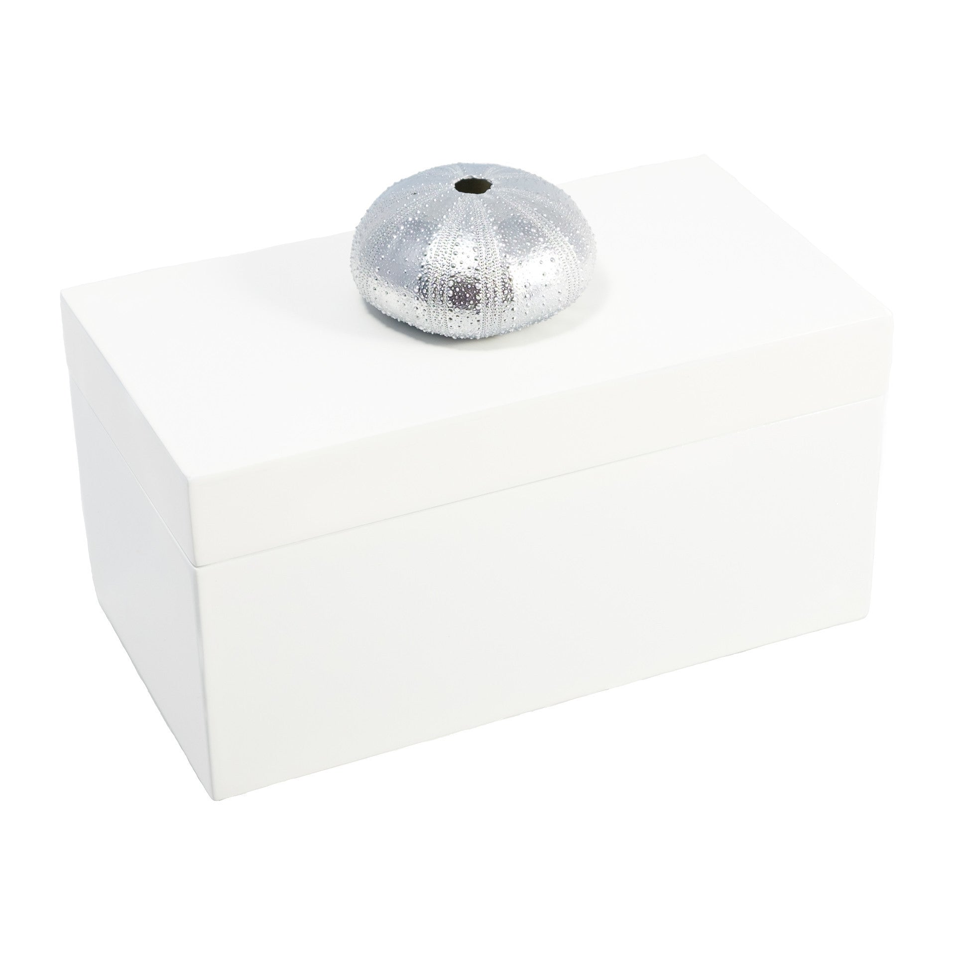 Large White Lacquer Box with Silver Urchin