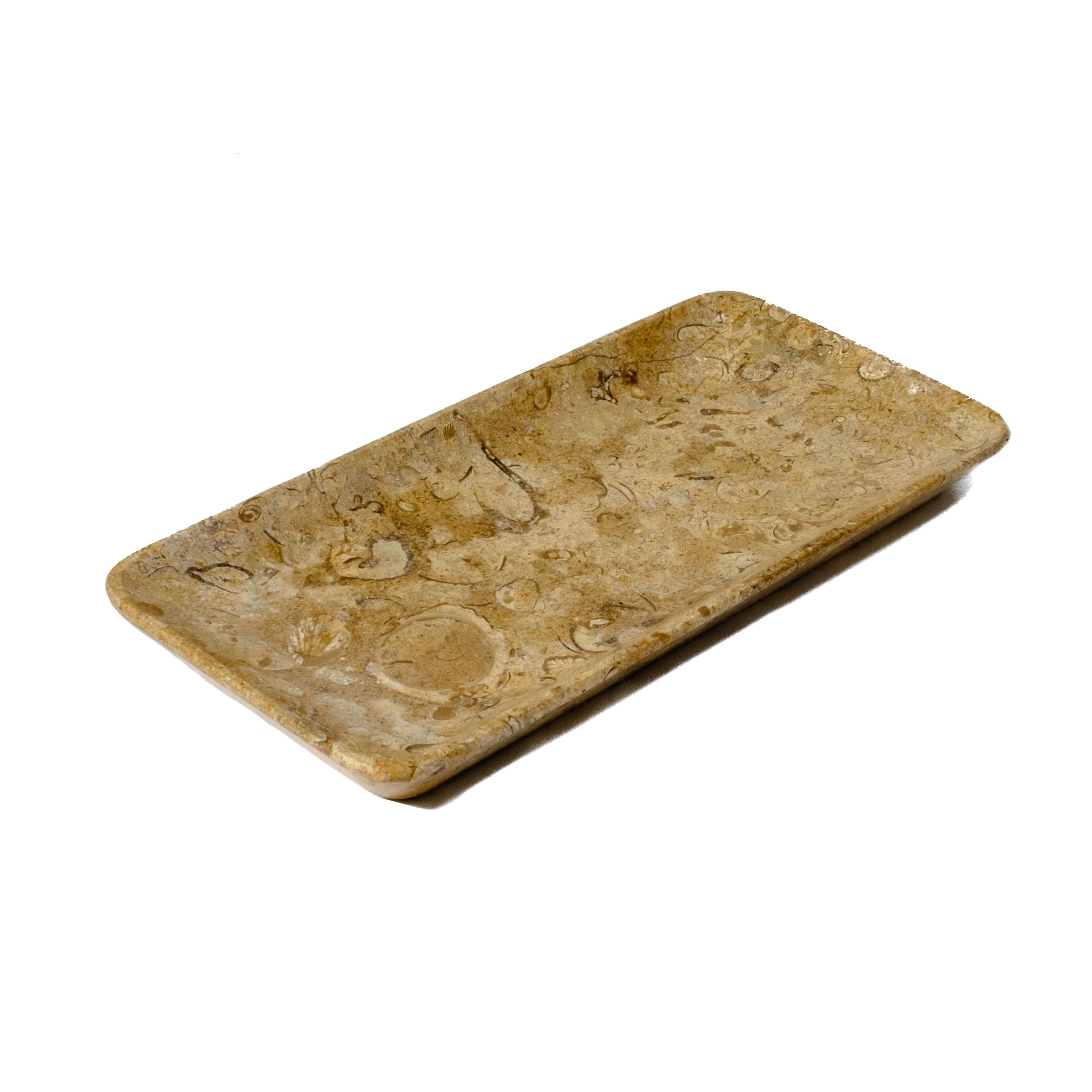 Fossilized Coral Jewelry Tray by Mapleton Drive