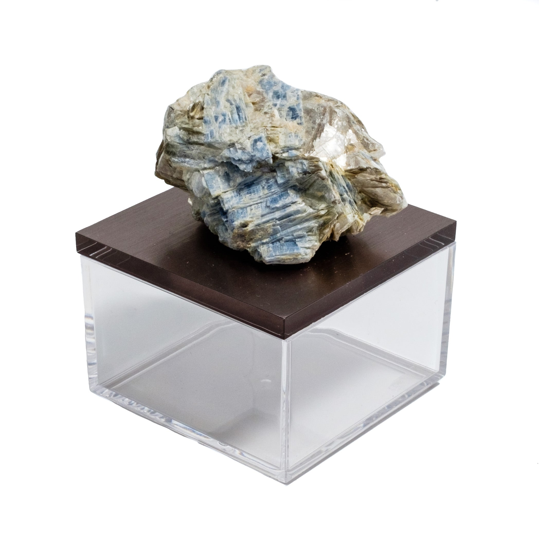 Gemmy Box with Kyanite