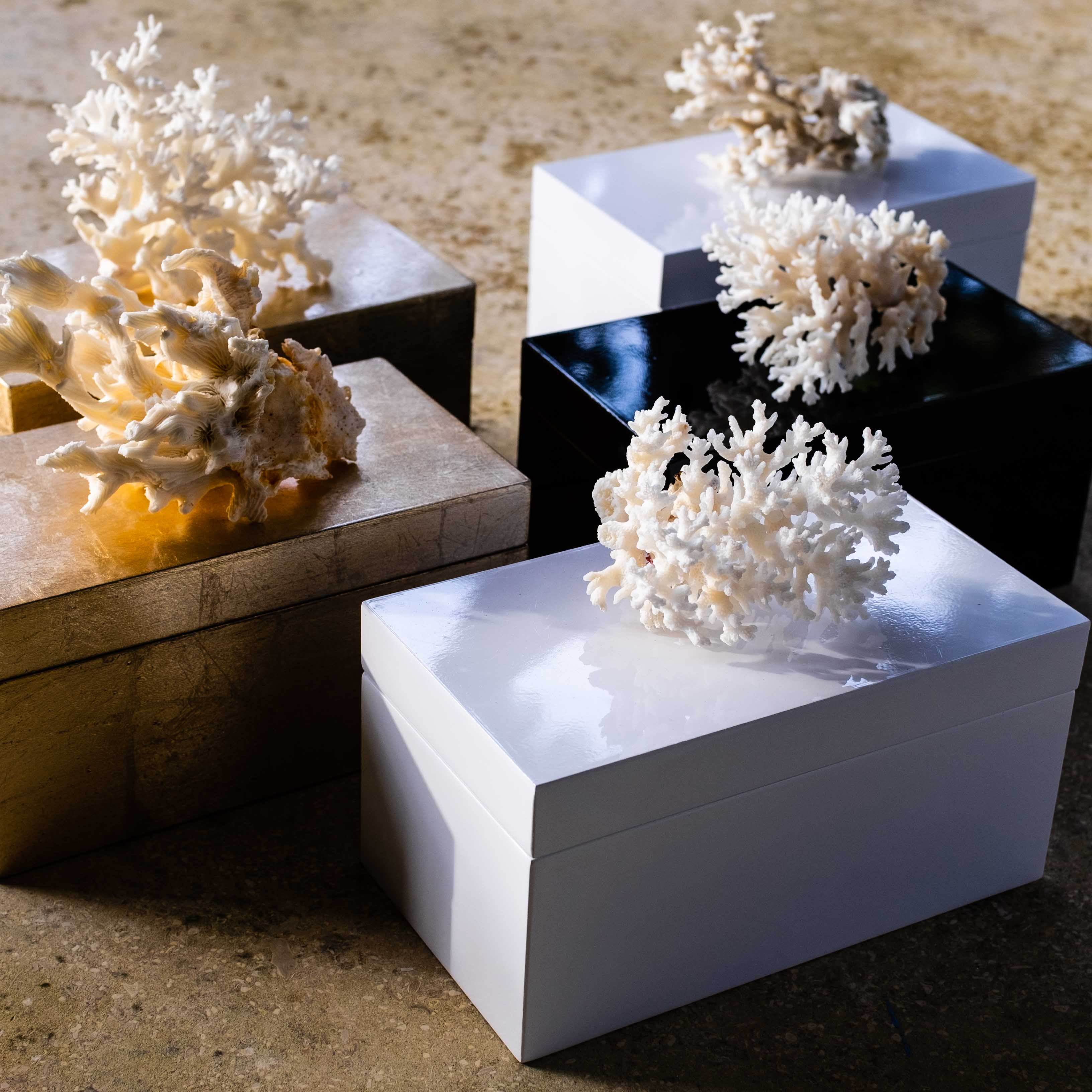 coral boxes by Mapleton Drive