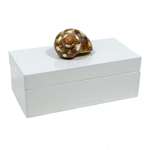 Medium White Lacquer Box with a Snail Shell