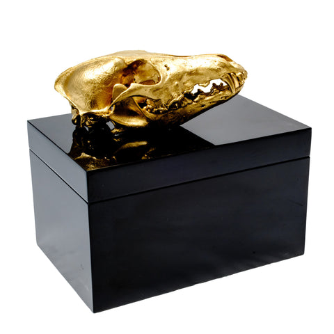 Remote Black Lacquer Box with Gold Coyote Skull