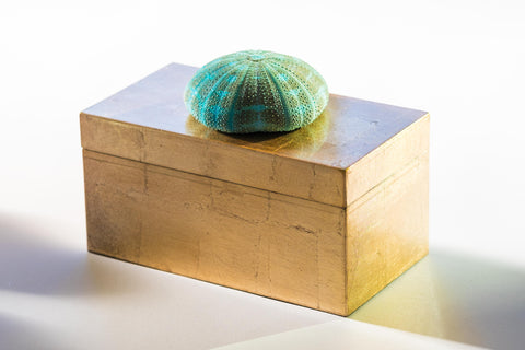 Large Brushed Gold Box w/ Turquoise Urchin