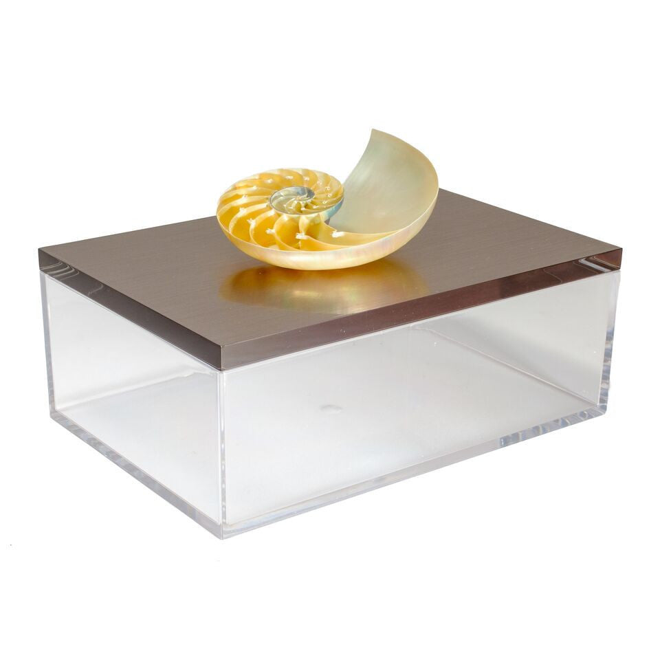 Acrylic Gun Metal Gray Box with a Nautilus Shell