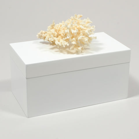 Large White Lacquer Box with Birds Nest Coral