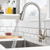 Single Handle High Arc Pull out Kitchen sink Faucet with Pull Down Sprayer