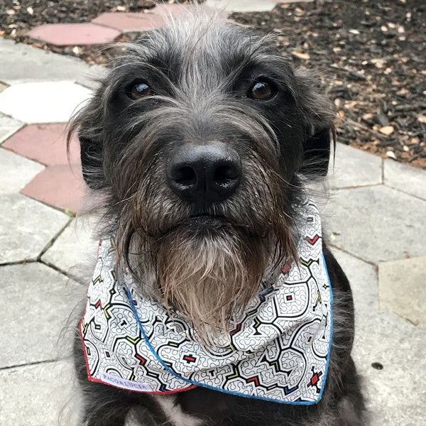 "Bandana for Pets & People - Shipibo ""Selva"" Design"