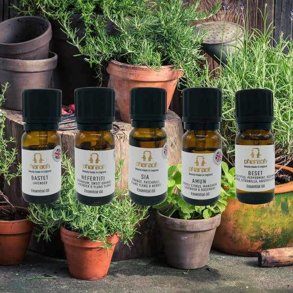 BESET (Eucalyptus, Peppermint, Rosemary, Orange, Citronella, Aniseed, Thyme. Essential Oil 10ml discover beauty made in England | Pharaoh London Cosmetics UK