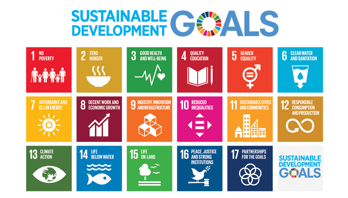 SDGS Goals Vision 2030 | Pharaoh London