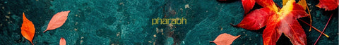 Packaging | Pharaoh London Cosmetics UK - discover beauty made in England