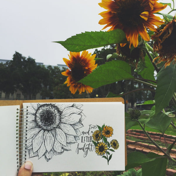 illustrated sunflower